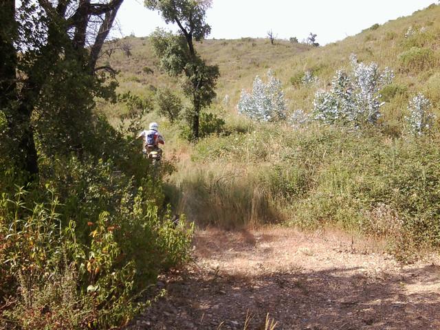 Portugal sur trail 16 Foto0748