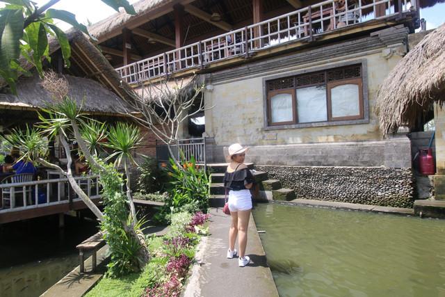Jalan-Jalan Darat Baluran-Bali