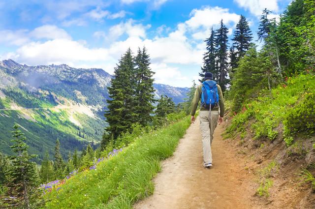 Hiker on trail11