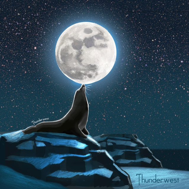 seal-moon-by-thunderwest-d8yy6o4-png.jpg