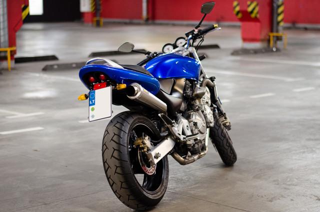 Hornet 001