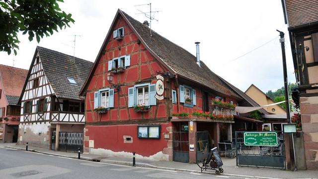 7 Kintzheim vignes Alsace France