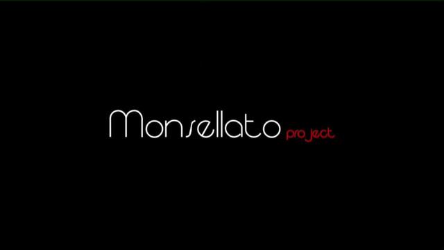 Monsellato-Progect.jpg