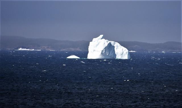 Iceberg day 167