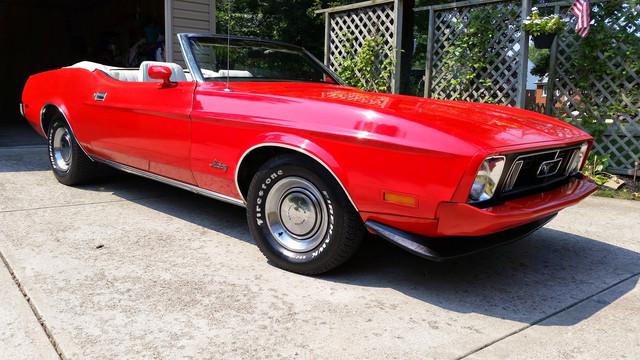 [Image: Mustang.jpg]