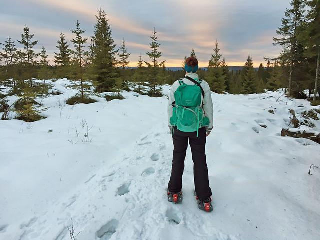 Sneeuwschoenwandelen in zweden1