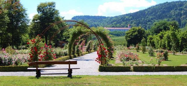 Botanicni vrt2