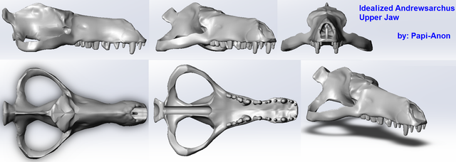 Andrewsarchus Skull Preview 2