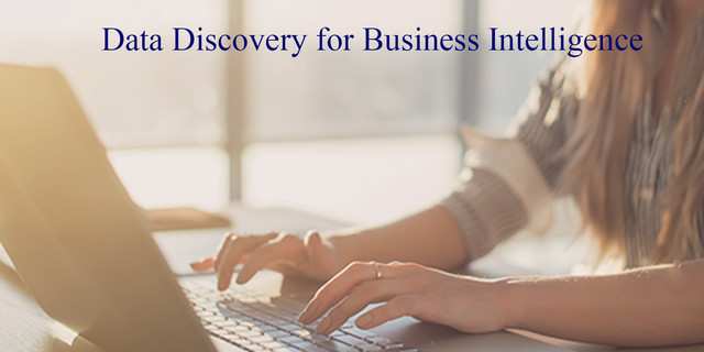 Data Discovery for Business Intelligence