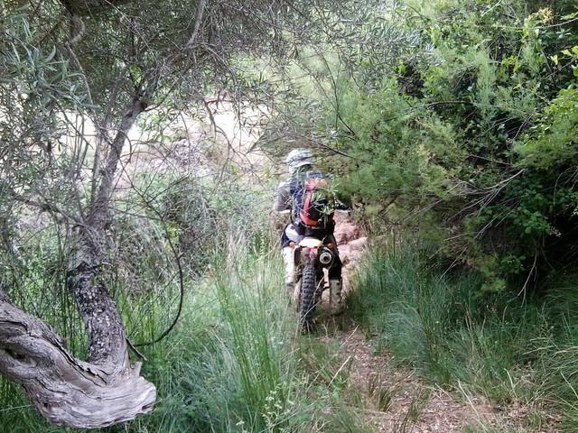 Portugal sur trail 16 Foto0882