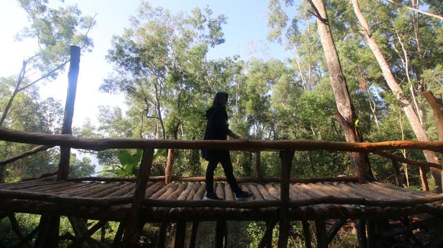 Tempat yang Harus Dikunjungi Selama 4 Hari di Yogya