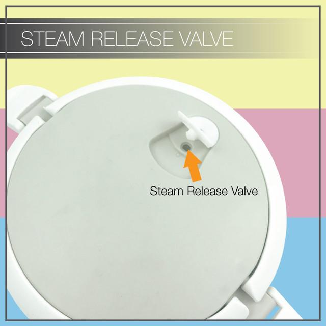 Steam_Release_Valve