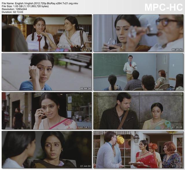 English Vinglish (2012) BluRay 480p & 720p Streaming Movie Download