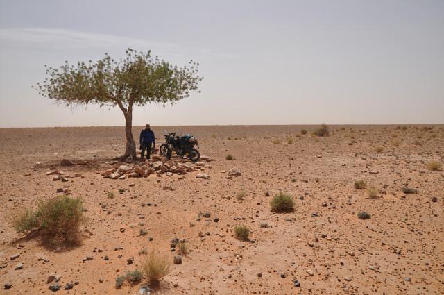 viaje al sur de marruecos DSC_0073