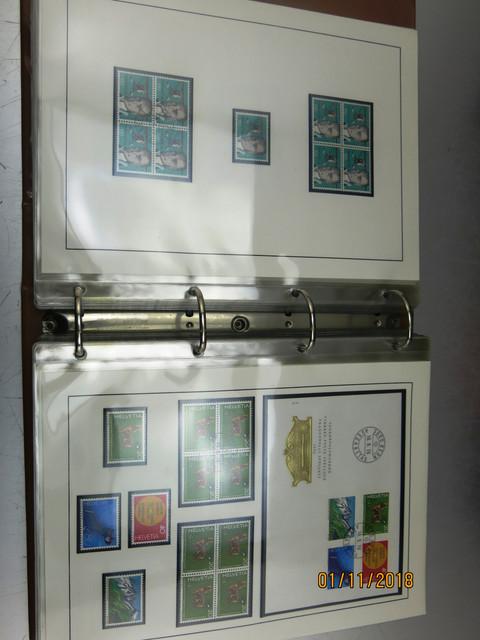 IMG-2524