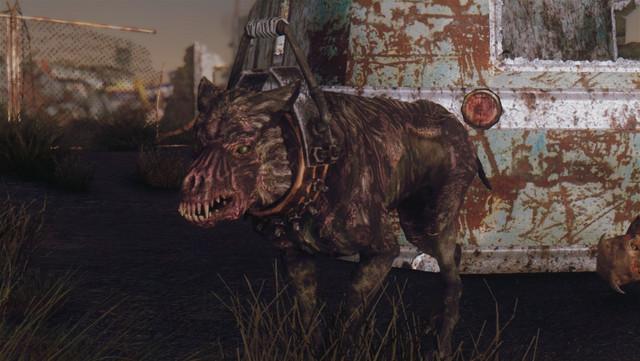 Fallout Screenshots XIII - Page 8 20180909203430_1