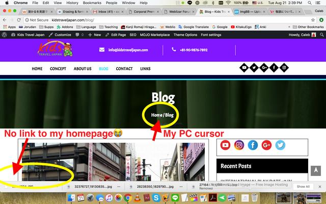 Blog Issue