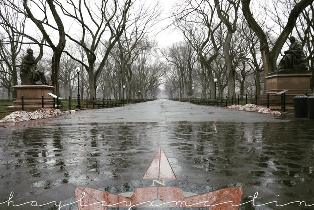 Instagram: hayleyxmartin | Central Park, The Mall