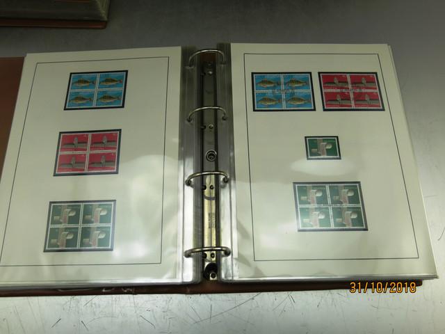 IMG-2363