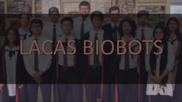 LACAS Biobots team