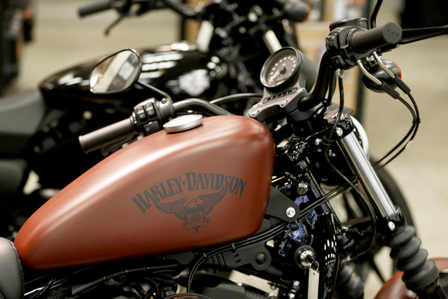 Earns_Harley_Davidson