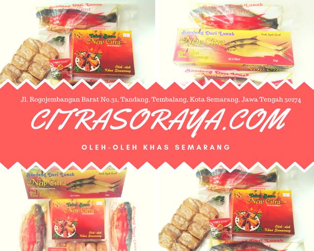 CITRASORAYA-COM-banner-4