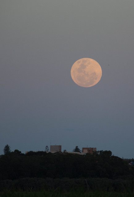 [Image: 20161114_Super_Moon_10.jpg]