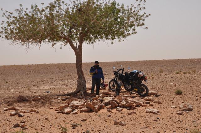 viaje al sur de marruecos DSC_0071