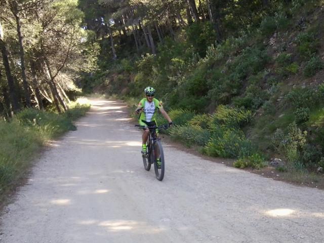 Jarapalos en bici Foto4878