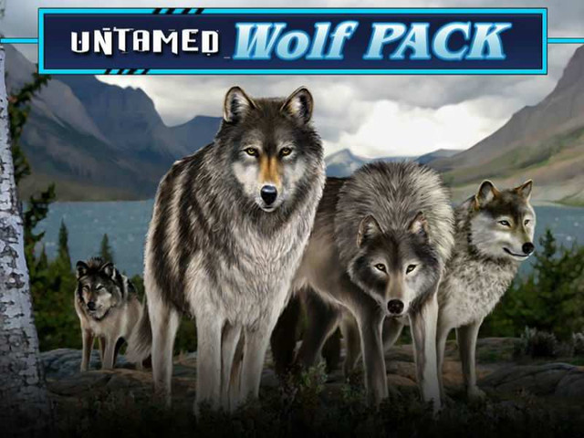 Untamed_Wolf_Pack