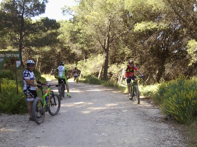 Jarapalos en bici Foto4879
