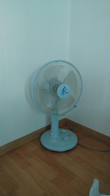 pedestal-fan.jpg