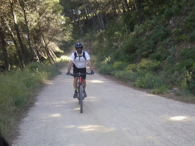 Jarapalos en bici Foto4884
