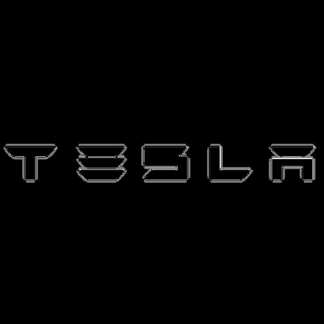 30460-Tesla