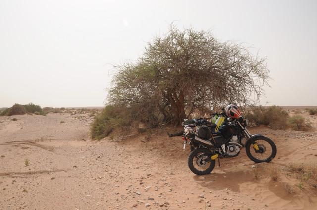 viaje al sur de marruecos DSC_0076