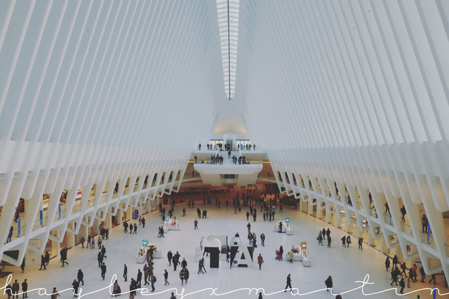hayleyxmartin | Oculus Station, New York