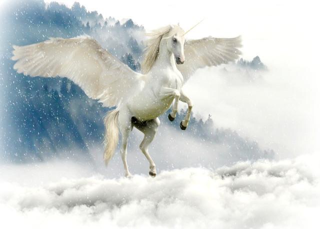 unicorn_2875349_960_720