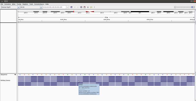 Screenshot_at_2018_06_21_12_56_32