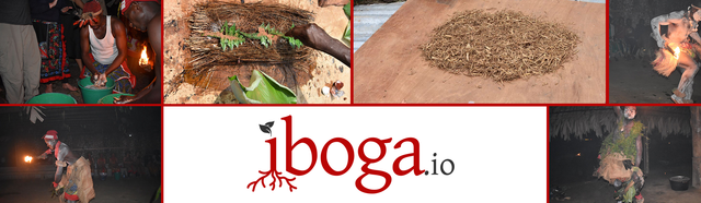 Iboga.io