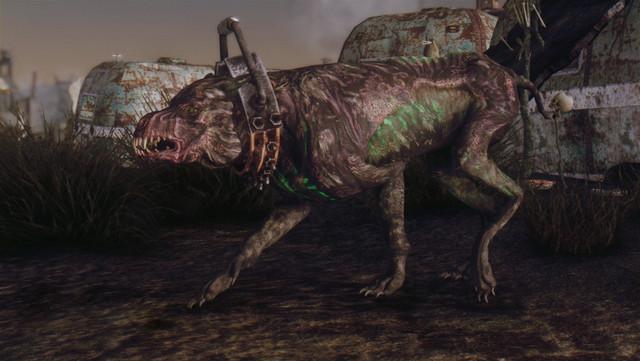 Fallout Screenshots XIII - Page 8 20180909203342_1