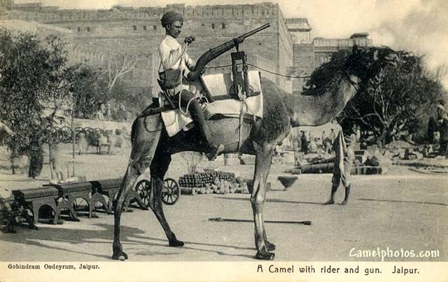 [Resim: army_camels5.jpg]