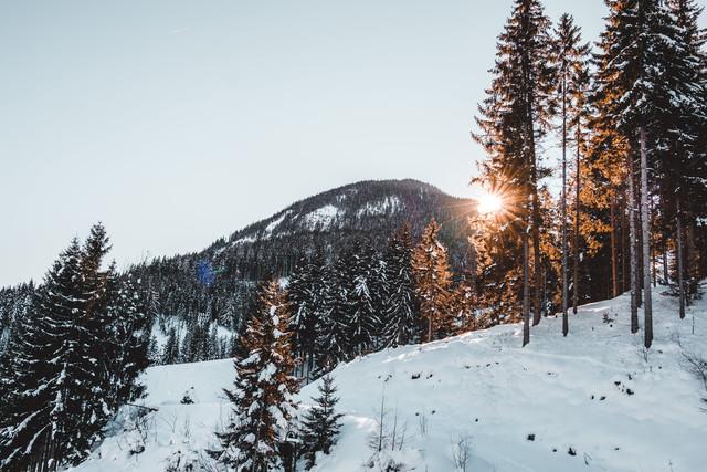 Skigebied Saalbach Hinterglemm