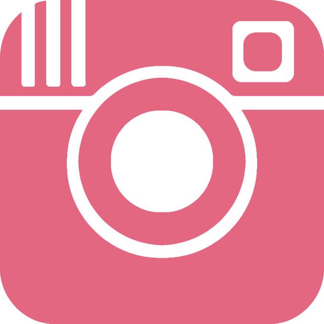SSD_instagram_logo