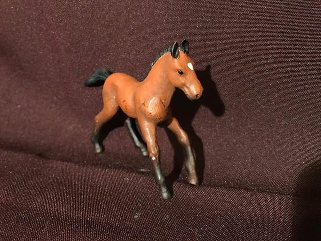 Tiptoi andalusian foal 23226868_10214716742776296_1259990492_n