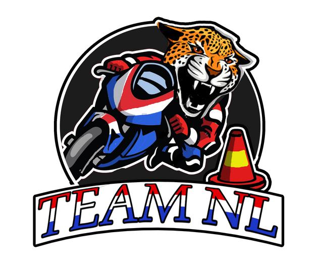Team NL logo cheetah 2c