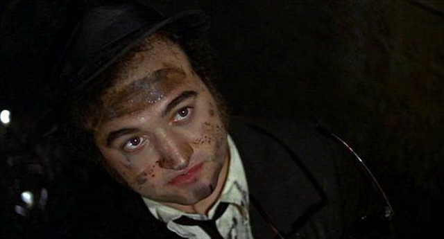 belushi-was-so-high-throughout-the-shoot-he-frequently-wandered-away-and-was-once-discovere-photo-u1