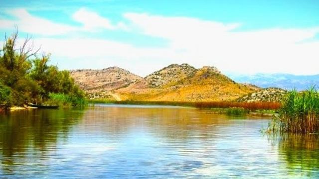 Mušičarenje klena na Skadarskom jezeru Screenshot_2018_07_20_22_21_59_676_com_miui_gallery