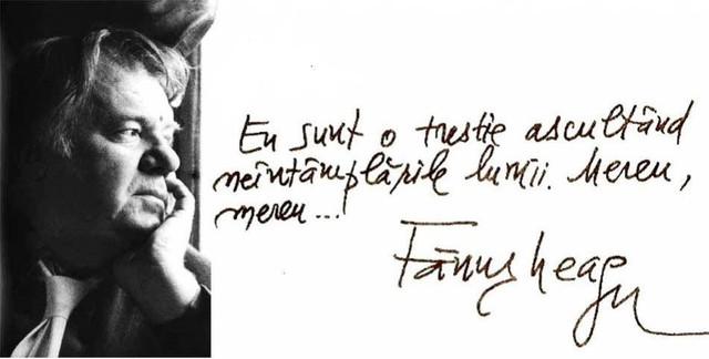 fanus_neagu