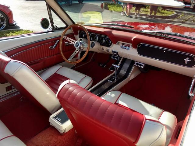 [Image: car_show_4.jpg]