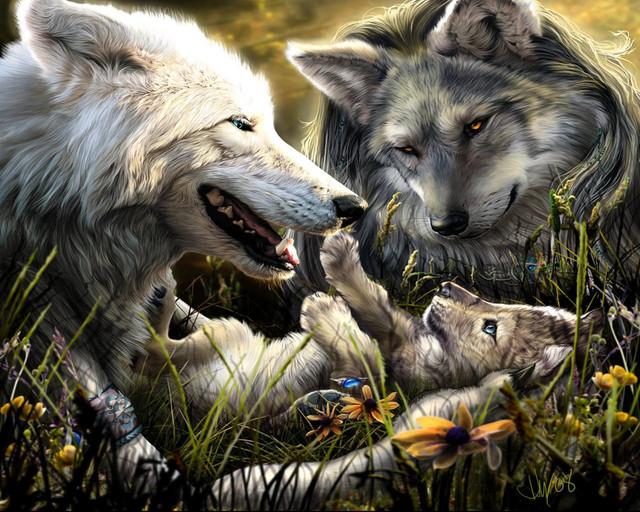 wolfsss